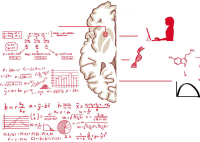 Strategies for integrated analysis in Neurogenetic / Imaging Genetics studies